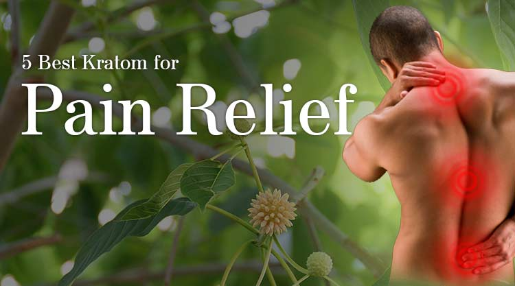 5 Best Kratom for Pain Relief
