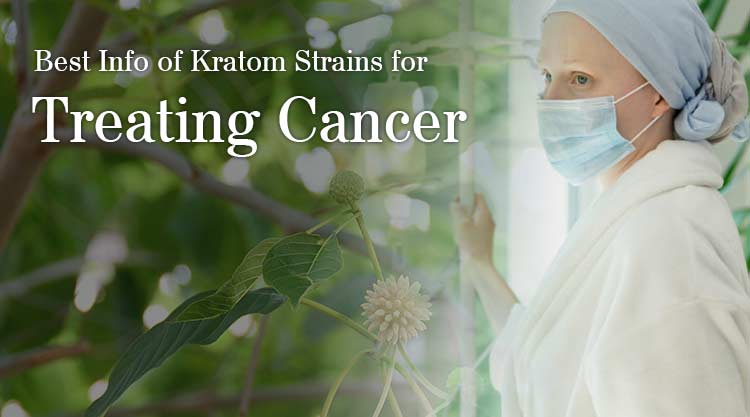 Best Info of Kratom Strains for Treating Cancer
