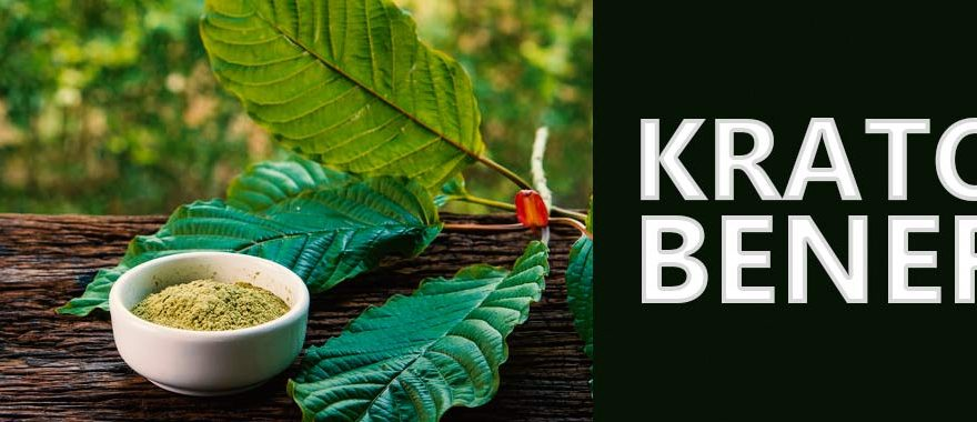 What is Kratom & How can it benefit you?